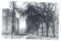 Looking south at A.R.H., Grinnell College, Grinnell, Iowa