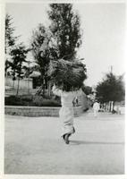 Chinese person carrying a bundle of sticks