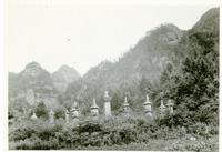 Photo of Small Shrines