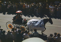 Green's Food MKT Horse and Carriage in 1948 Grinnell Day Parade