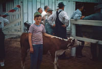 Boy with Calf at 1948 Grinnell Day