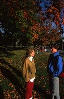 Fall Day, 1990
