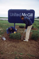 Planting Shrubbery at United McGill Corporation