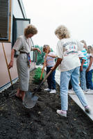 People Planting Shrubs at Davis Elementary School