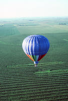Hot Air Balloon Over Fields