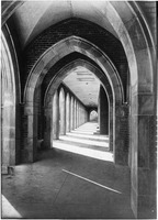 Men's Loggia