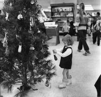 Decorating Bookstore Tree