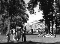 New Student Day 1964 Photographs