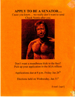 Chuck Norris Election Poster