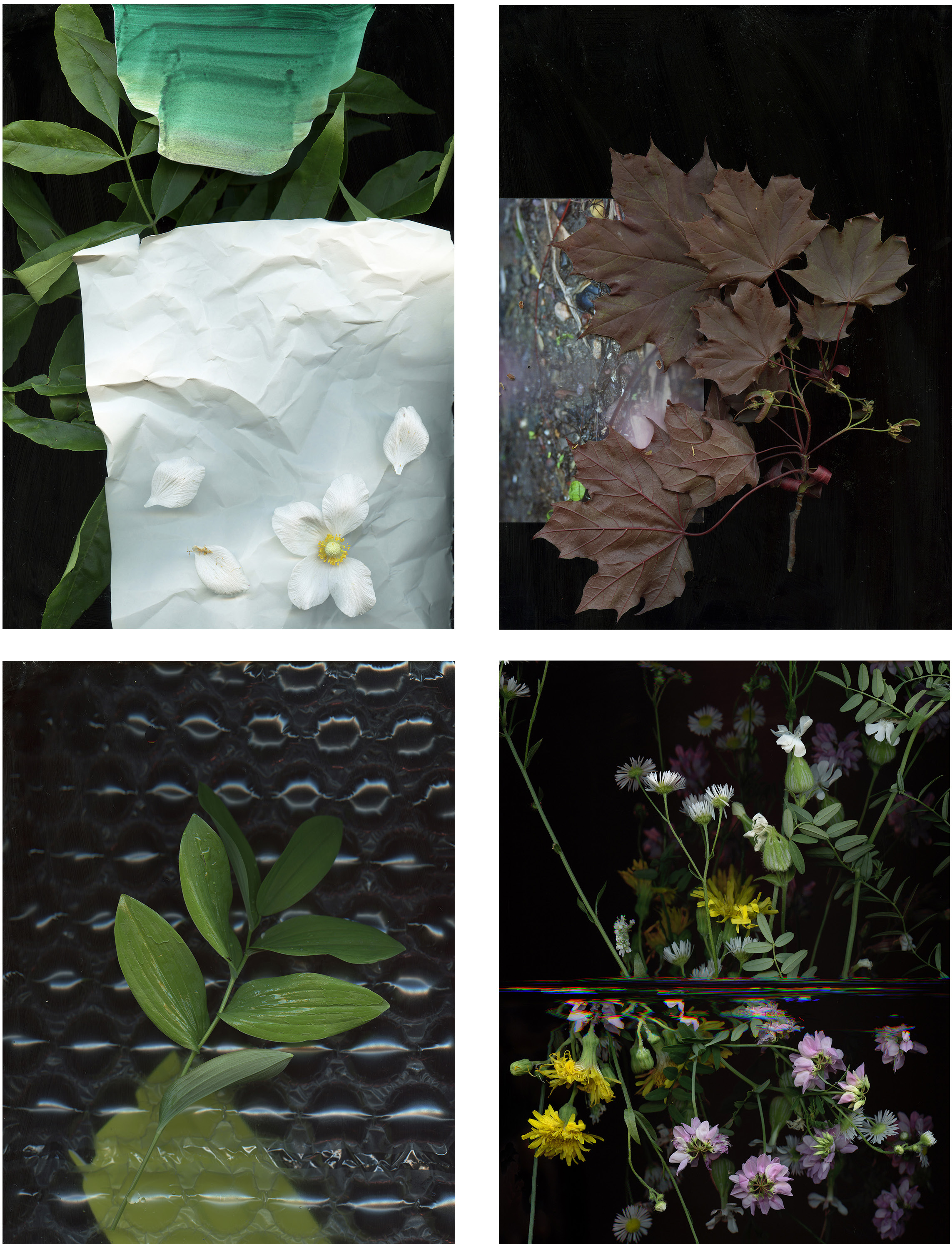 """Clockwise from top left, """"Prairie Construct #23, #5, #37 & #18,"""" Archival Inkjet Print, each image 36 x 54 inches, by Regan Golden, 2015"""
